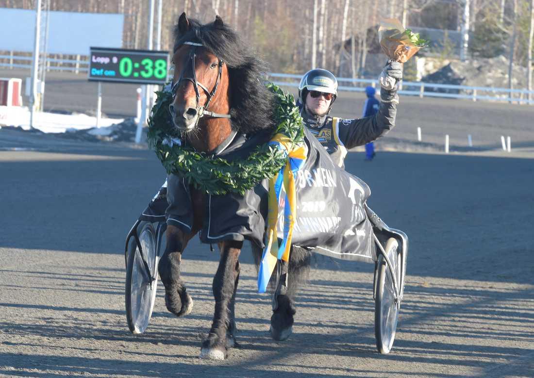 Tangen Haap tillsammans med tränaren och kusken Björn Karlsson efter lördagens V75-seger på Umåker.