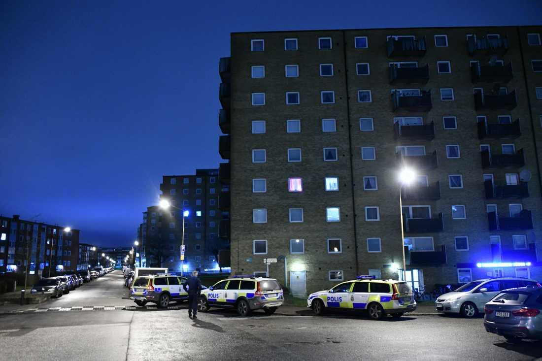 Flera polispatruller på plats vid Docentgatan i Malmö.