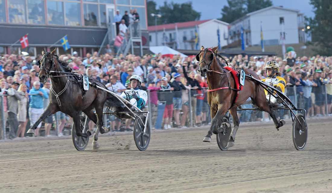 Örjan Kihlström och Perfect Spirit vinner Sprintermästaren knappt före Lucifer Lane och Johan A Nilsson.
