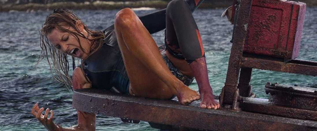 """The shallows""."