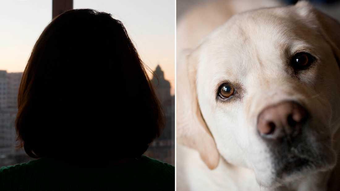 Mia har idag ett bra liv med sin dotter, men de saknar fortfarande hunden. Hunden på bilden är inte Mias.