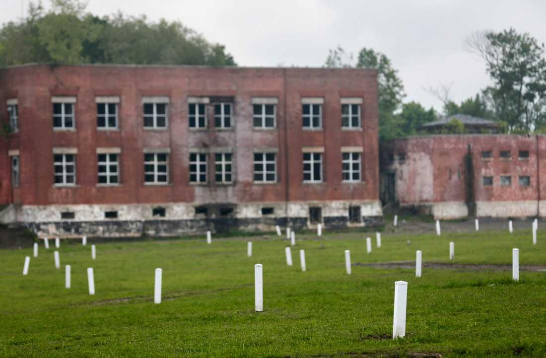 På Hart Island finns inga gravstenar – bara vita markörer ovanpå massgravarna. Arkivbild.