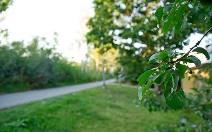 Våldtäkten ägde rum utomhus i Spånga tidigt på lördagmorgonen.