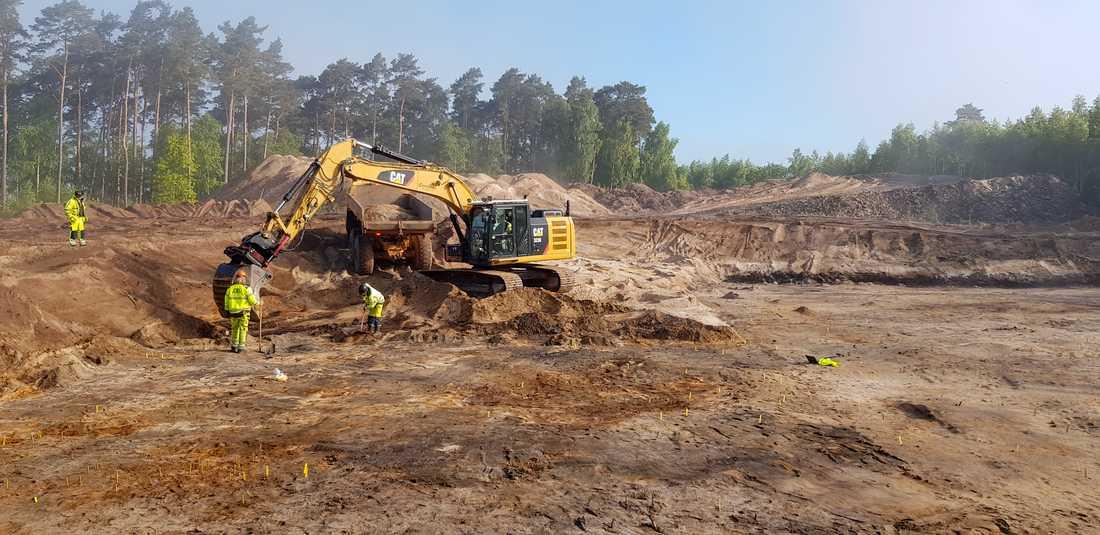 """Här, i Ljungaviken i Sölvesborg, har lämningar efter stenåldersjägare hittats. De har legat under ett lock av lera. """"Nu har vi lyft bort locket"""", säger Carl Persson, arkeolog och projektledare."""