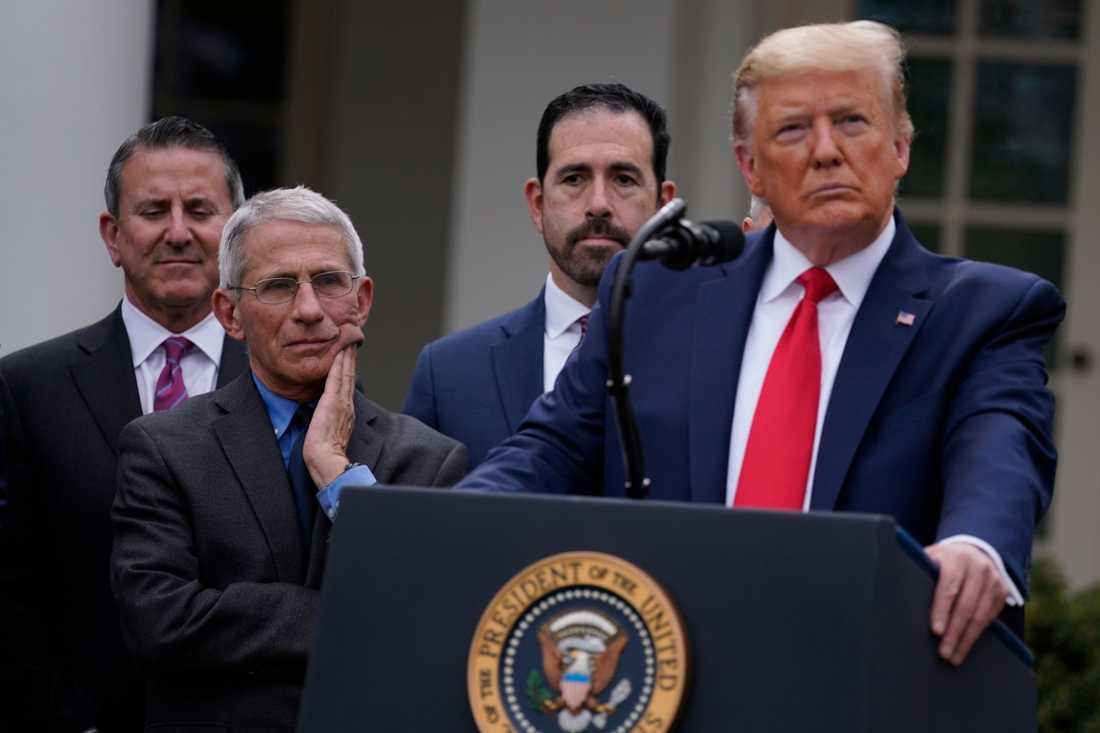 Presskonferens med Donald Trump och Anthony Fauci,  Vita husets medicinska expert