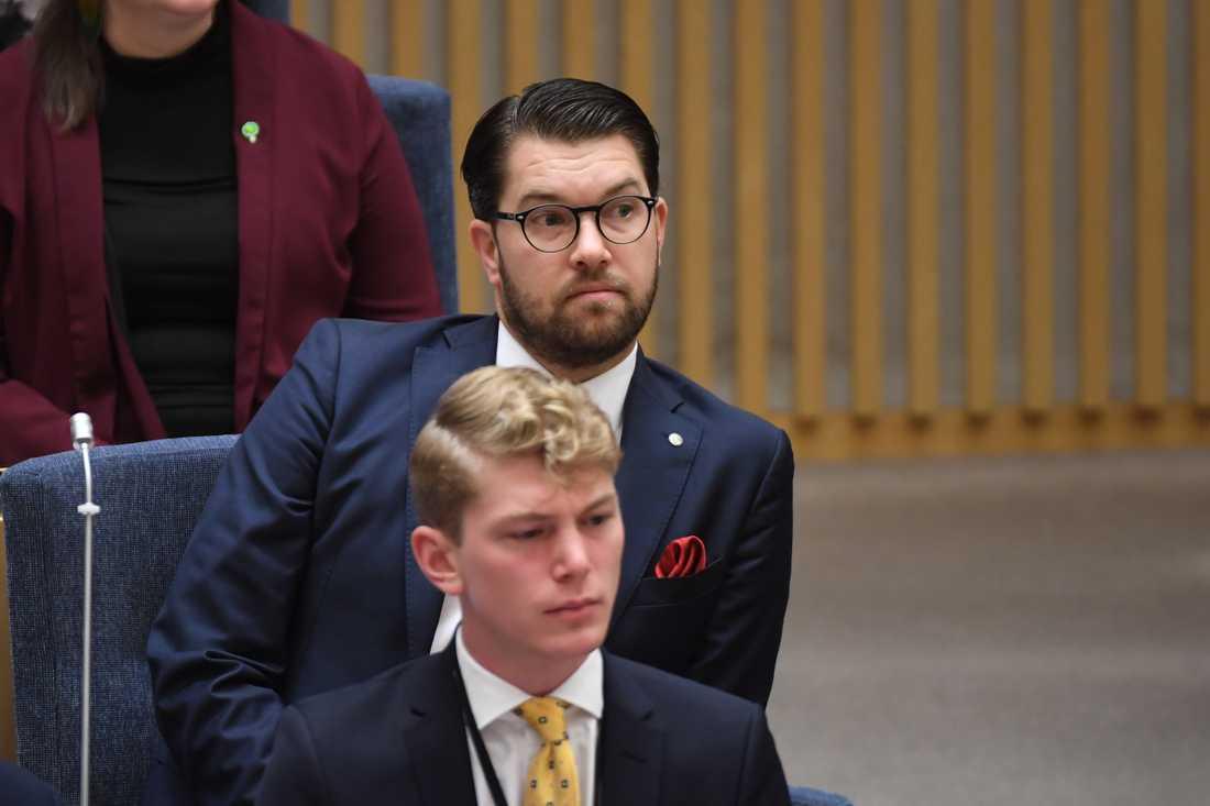 Jimmie Åkesson innan förmiddagens statsministeromröstning.