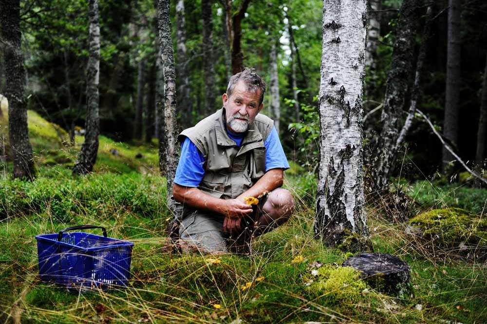 Biologen och svampexperten Pelle Holmberg var dagens sommarpratare.
