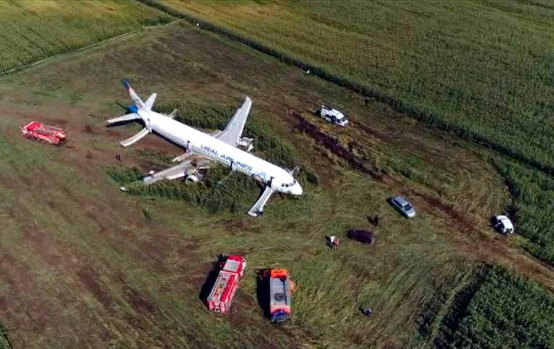 23 personer skadades när planet kraschlandade
