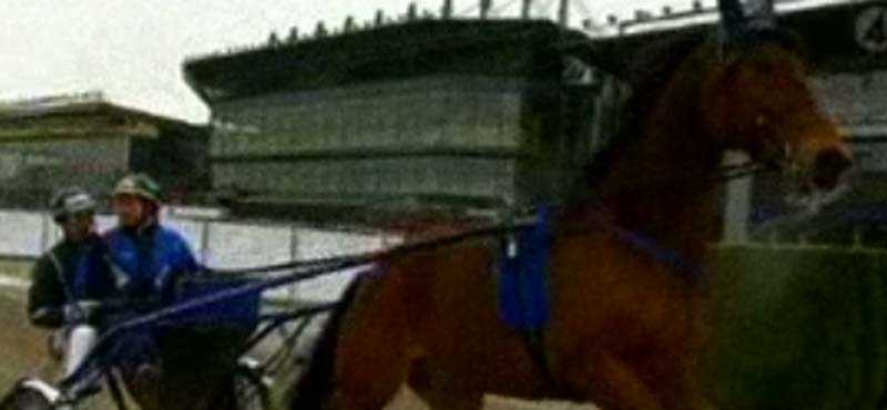 Provköra Johan Edlund satt upp bakom Victory Tilly och kunde konstarera att hästen verkar pigg.