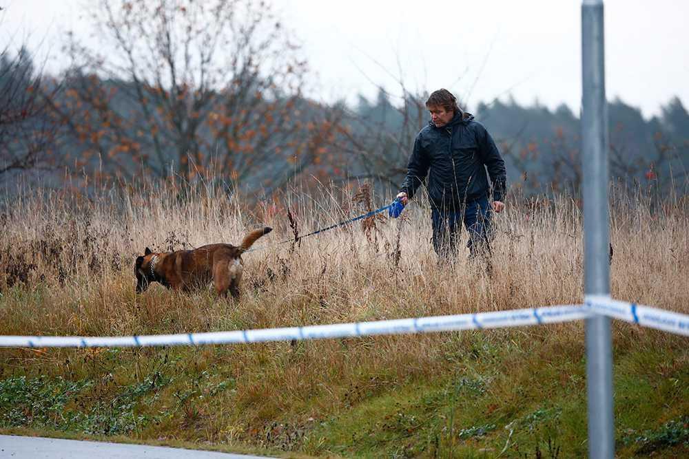 Polishundar söker igenom ett område i Ljungsbro.