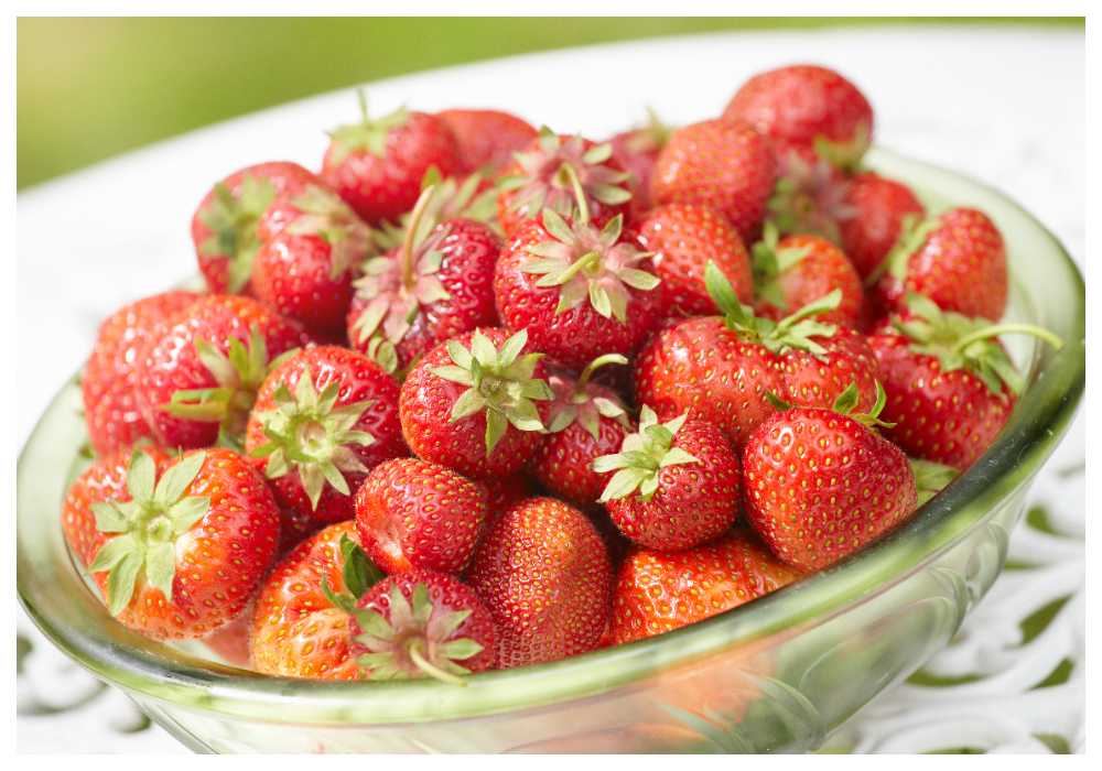 Passa på att frossa i jordgubbar, efter midsommar kan de ta slut.