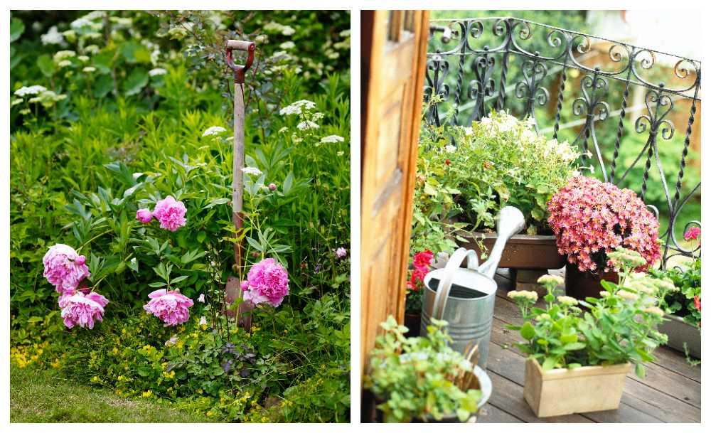 Här får du tips både för trädgården och balkongen.