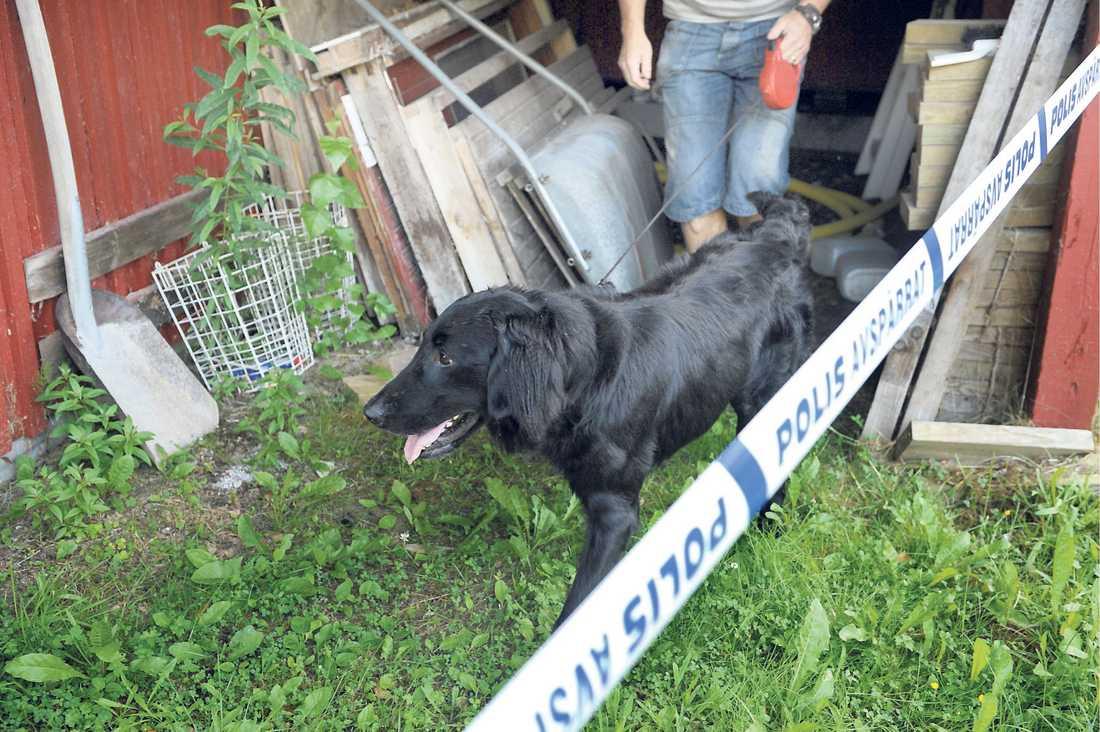 Jagar ledtrådar Poliser genomsökte Marina Johanssons hus med hjälp av en specialtränad hund.