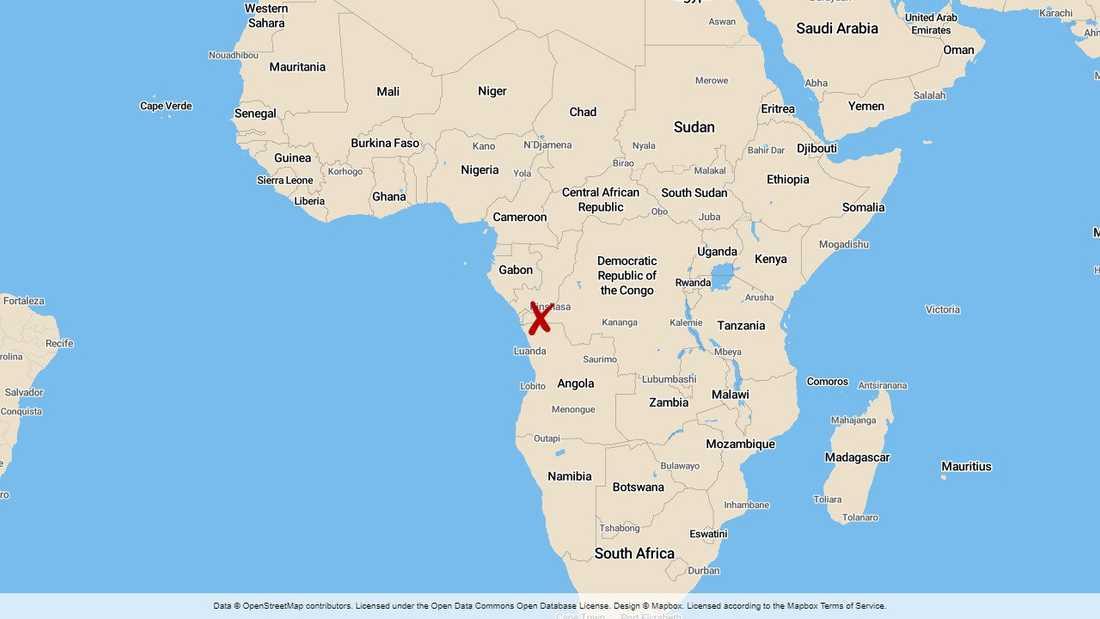 Minst 14 personer dödades och många skadades när en lastbil plöjde fram bland fordon och fotgängare i Kongo-Kinshasas huvudstad Kinshasa.