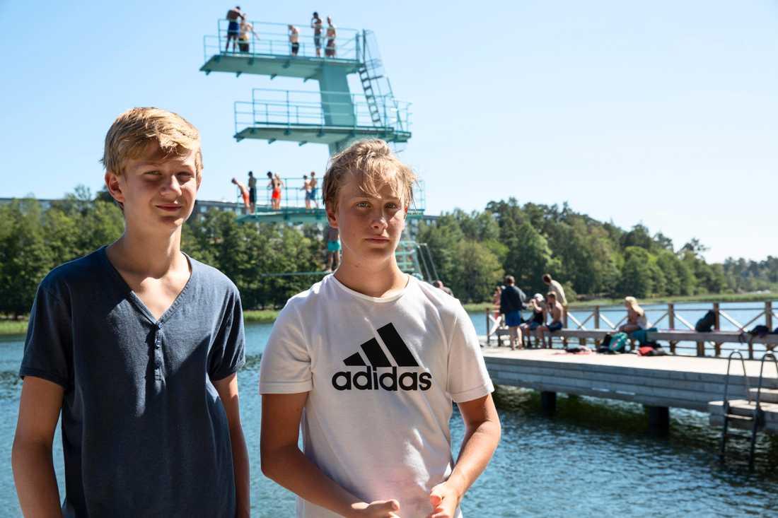 Colin Rundberg, 13 år, och Lukas Dahlin, 14, räddade två män från att drunkna.