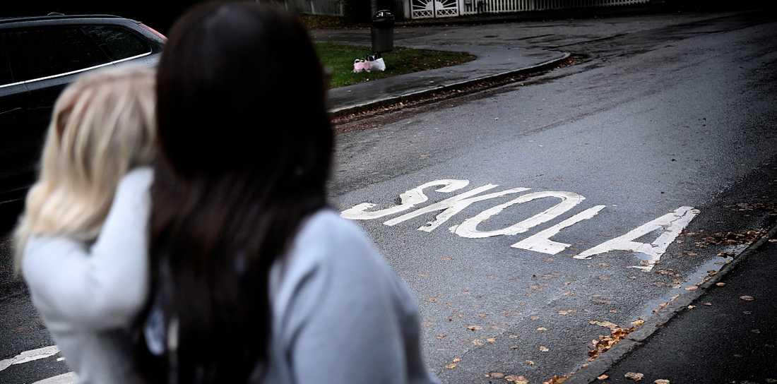 Regeringen borde tillsätta en kommission för att få bort de utbredda problemen med sextrakasserier i skolan.