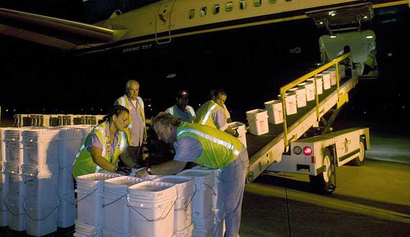2007 lyckades Odyssey Marine Exploration bärga 17 ton silvermynt.