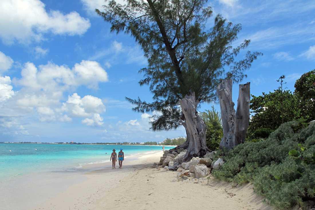 Sjumilastranden på Kajmanöarna, ett av skatteparadisen där stora summor, lagligt göms undan för att undgå skatt.