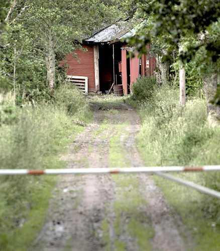 Instängda Här på Berghedens gård utanför Mariestad levde djuren i misär.