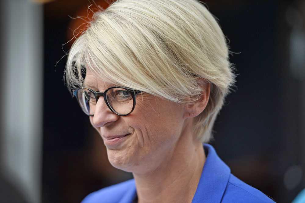 Tidigare arbetsmarknadsministern Elisbeth Svantesson (M) är kritisk till regeringens etableringspaket.