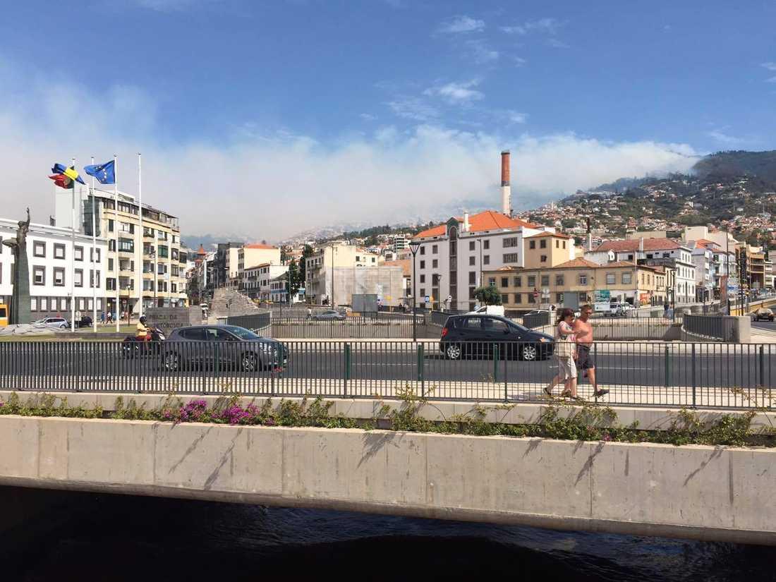 Hamnen i Funchal, Madeira