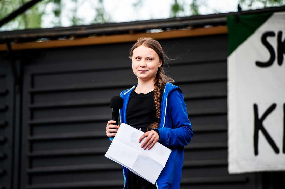 Ungdomsrörelsen Fridays For Future arrangerade i maj en global skolstrejk för klimatet med Greta Thunberg i spetsen.