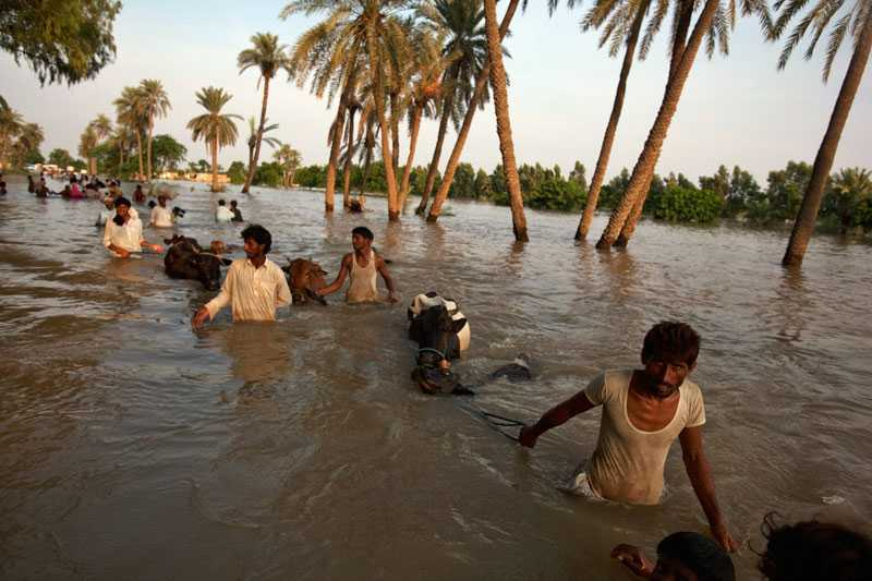 Minst 1 600 människor har dött och 13 miljoner människor har drabbats av översvämningarna i Pakistan, landets hittills värsta naturkatastrof någonsin.