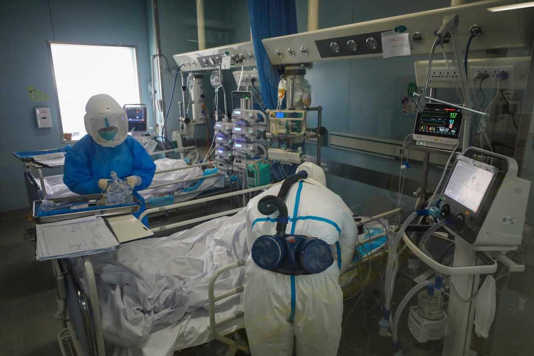 Sjukvårdare behandlar en virussmittad patient på Jinyintansjukhuset i Wuhan i Hubeiprovinsen i Kina.