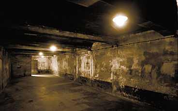 DÖDENS KAMMARE Gaskammaren i koncentrationslägret Auschwitz i Polen. Juridikprofessorn Göran Englund hävdar att gaskamrarna aldrig fungerade och att vittnesmålen om miljoner mord är påhittade.