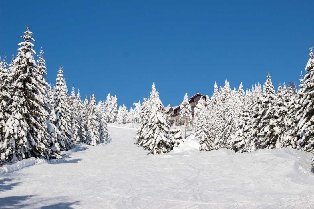En vacker vinterdag i Romme.