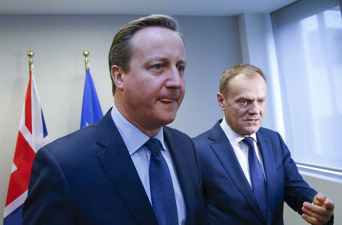 David Cameron med Donald Tusk.