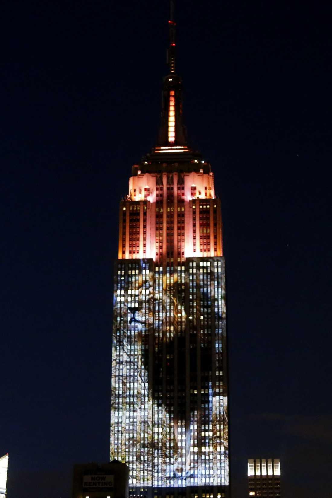 Projektionen täckte 33 våningar på en av New Yorks mest kända skyskrapor.