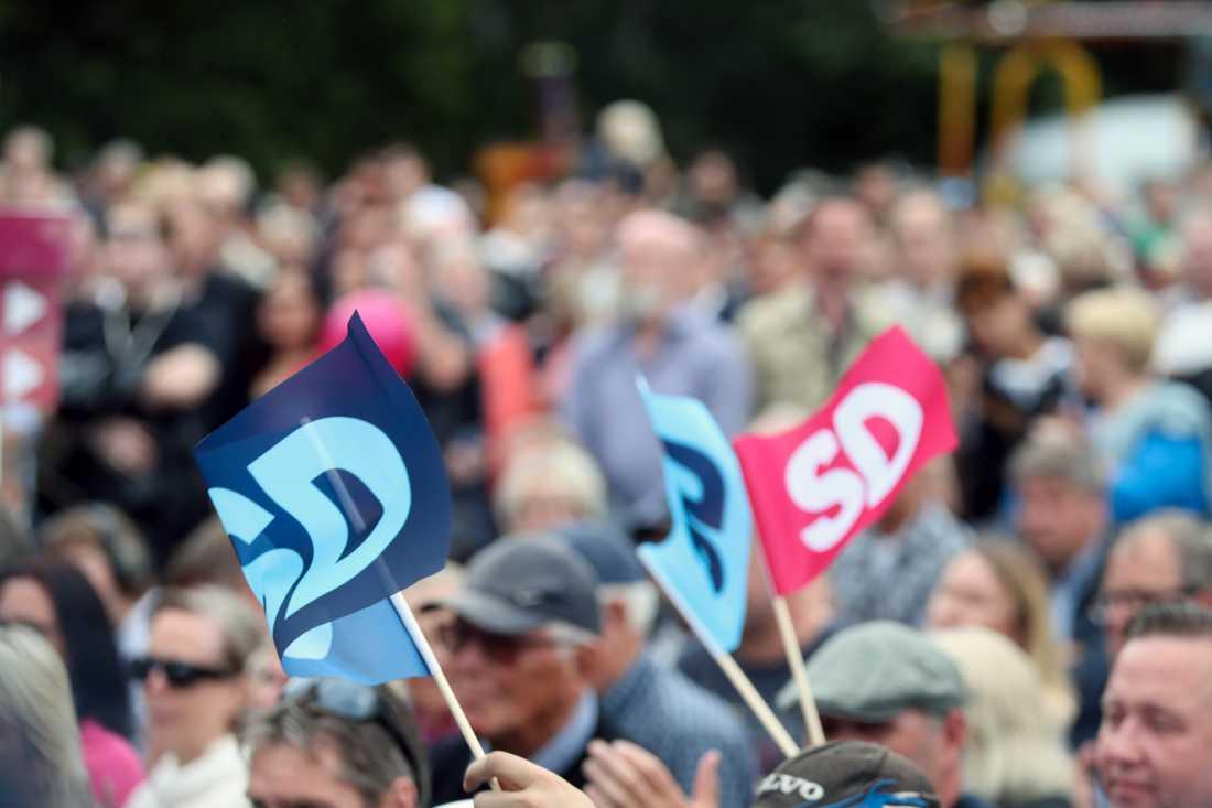 9 av 10 av SD:s väljare tycker att utvecklingen går åt fel håll.