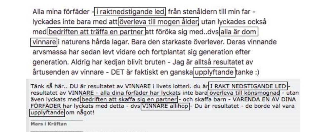 """Säkerhetsexperter som Aftonbladet varit i kontakt med anser att inlägg som Fogelklou  skrivit öppet på sina sociala medier påminner mycket om inlägg som """"afghan"""" har skrivit. Det översta är från Fogelklous Facebook-sida men är nu borttaget."""