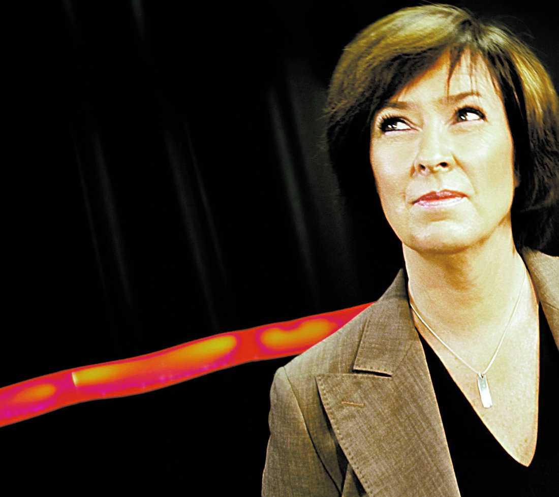 FÖRLORAREN Socialdemokraternas partiledare Mona Sahlin har en tung uppgift framför sig
