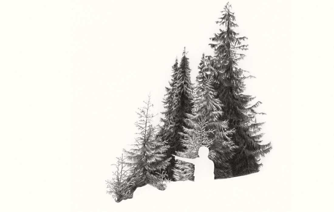 "Ann Böttcher,  ""Pekar genom en tysk skog"", 2002, blyerts på papper. Bilden är beskuren."