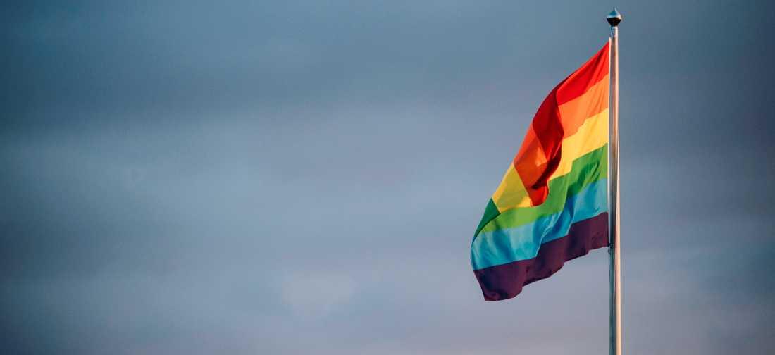 Utrensningen av homosexuella måste upphöra.