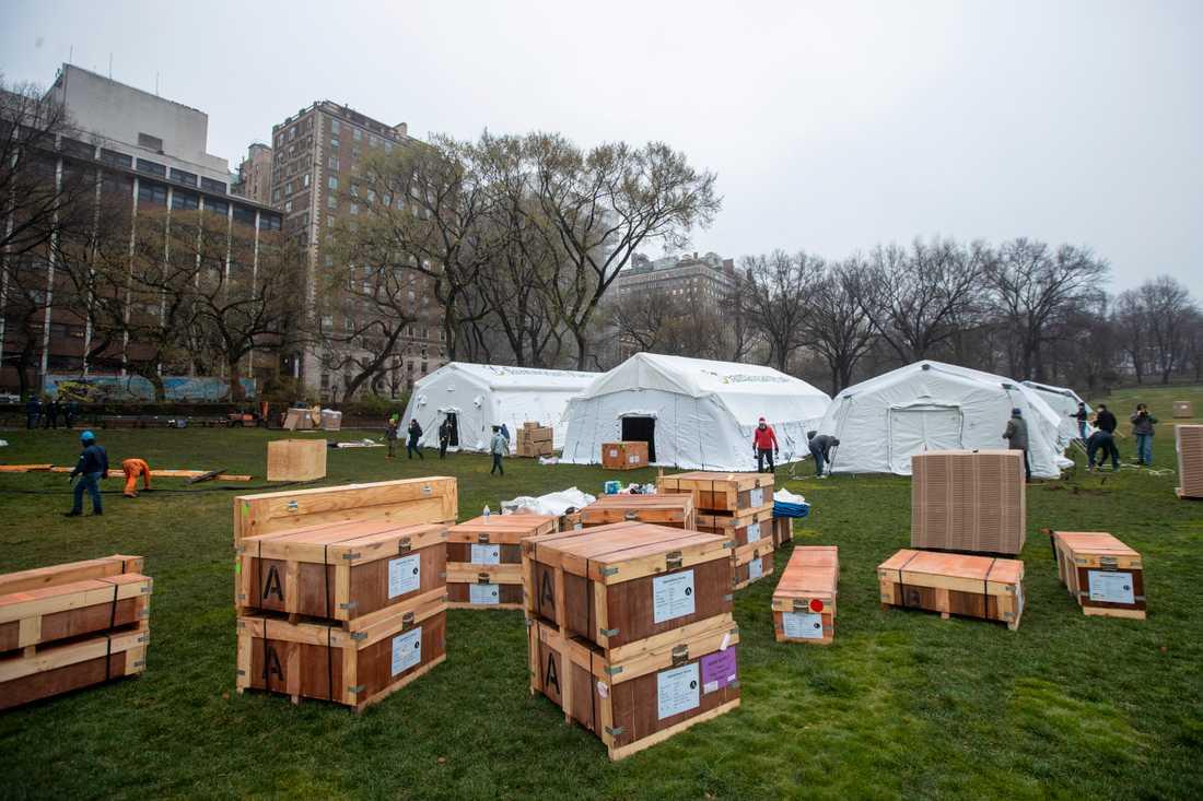Ett fältsjukhus håller på att byggas i Central park.