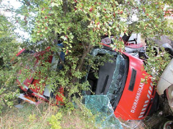 Djurambulansen slungades av vägen när lastbilen körde rakt in i den på vägrenen på E 6:an utanför Helsingborg 12 september 2014.