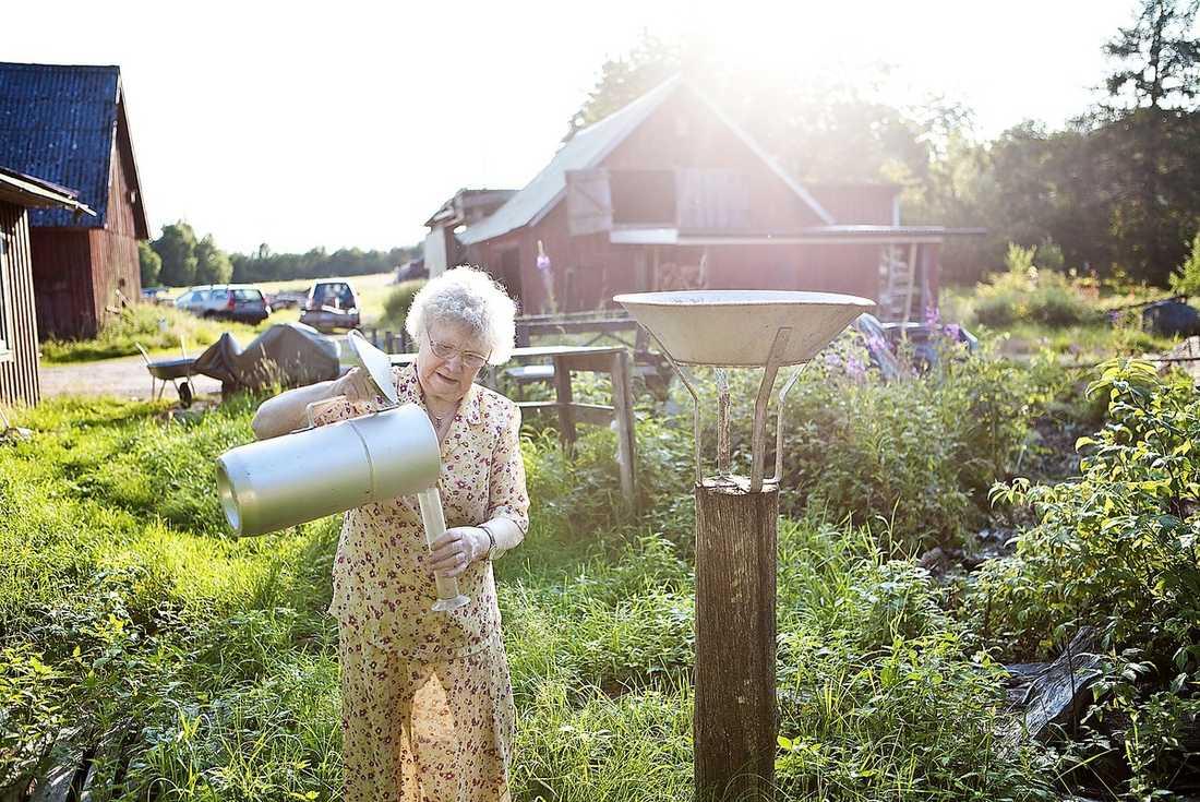 REGNREPORTER Marta Törnsjö, 79, har väderspanat i Havraryd åt SMHI sedan 1974. Och nog regnar det mycket men i går sken solen.