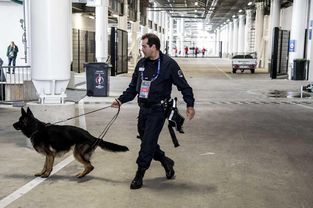 Arenan söks igenom med bombhundar.