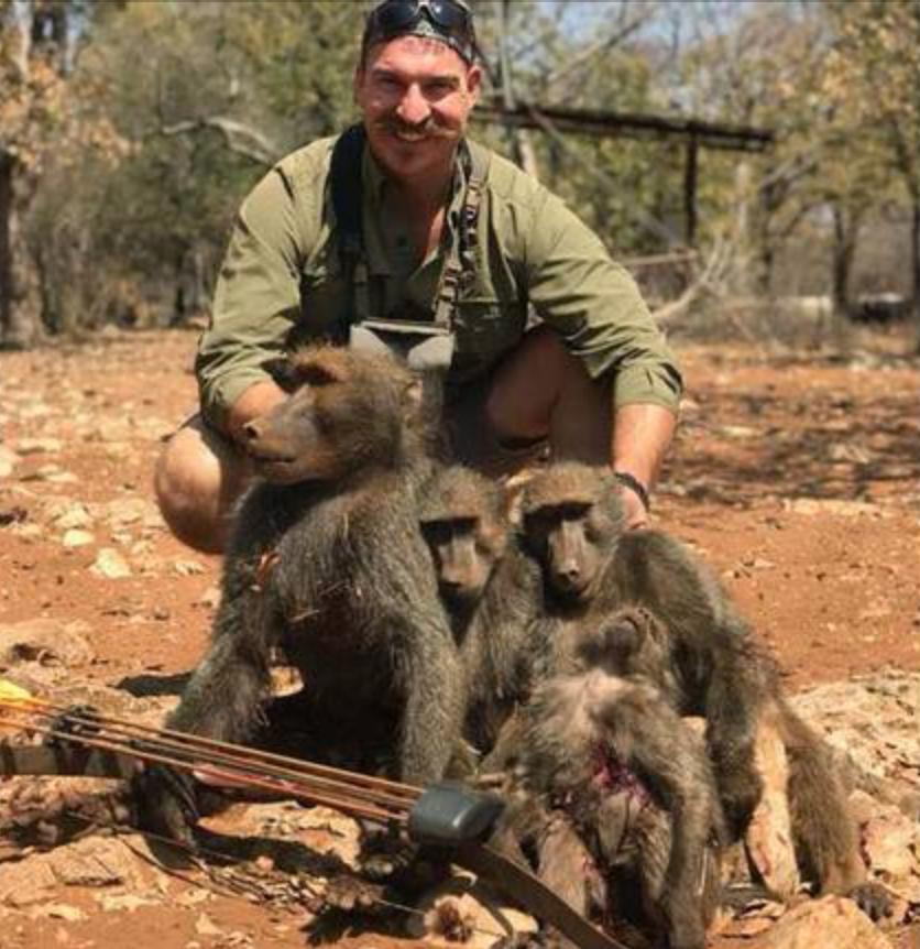 Bilden på den döda babianfamiljen har väckt starka känslor.