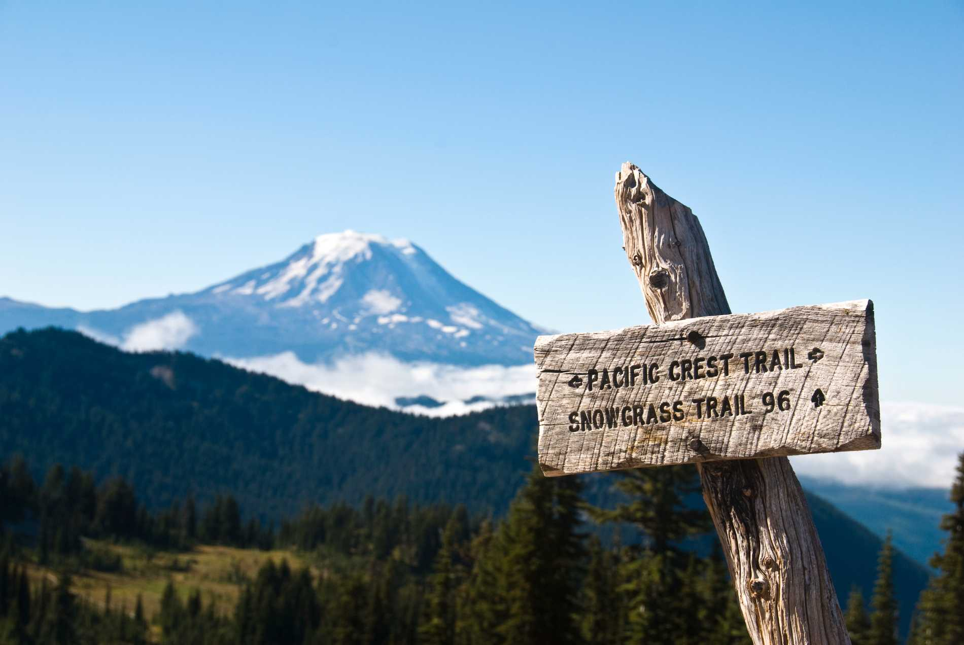 Cheryls Strayed vandrar The Pacific Crest Trail i filmen Wild.