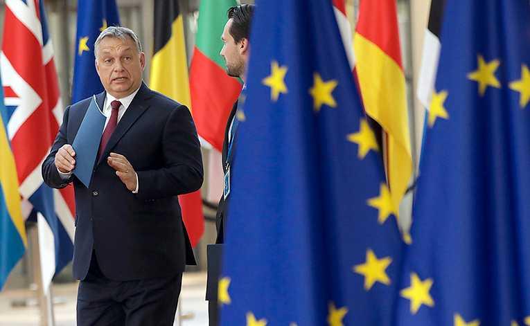 Ungerns premiärminister Viktor Orbáns nationalpopulistiska politik används som handbok för sverigedemokrater och liknande krafter runt om i Europa.