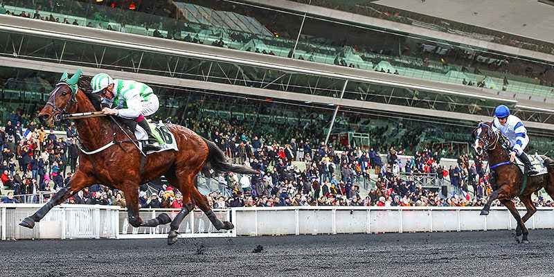 Bilibili förevigad i luften strax innan mållinjen i Prix de Cornulier. Jockeyn Alexandre Abrivard hade kontroll hela loppet med världens bästa montéhäst.