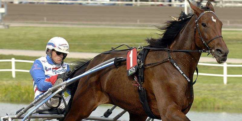 Clear Sign och Ove A Lindqvist var överlägsna på Umåker. Det var hästens årsdebut.