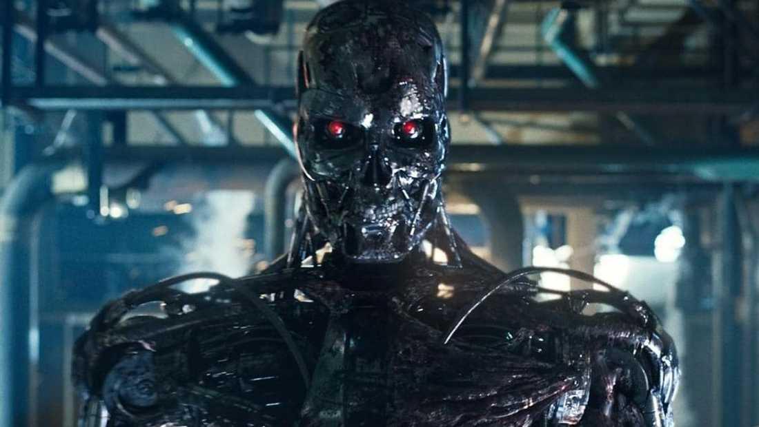 """""""Terminator""""."""