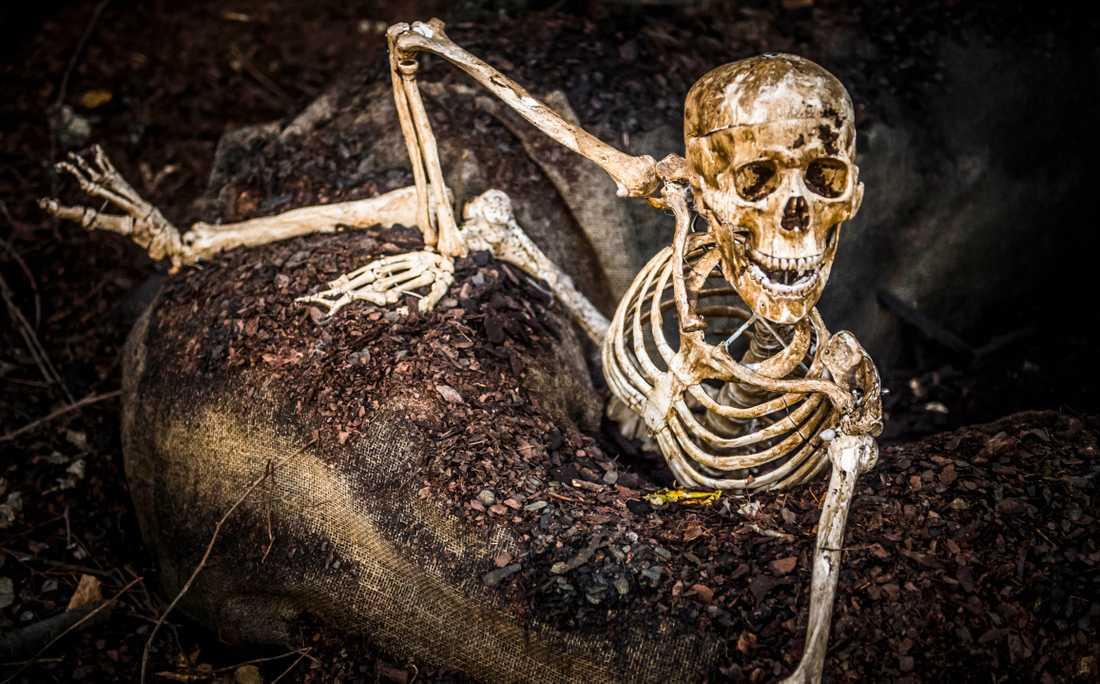 Ett helt annat skelett som inte har med fyndet i Storvreta att göra. Arkivbild.