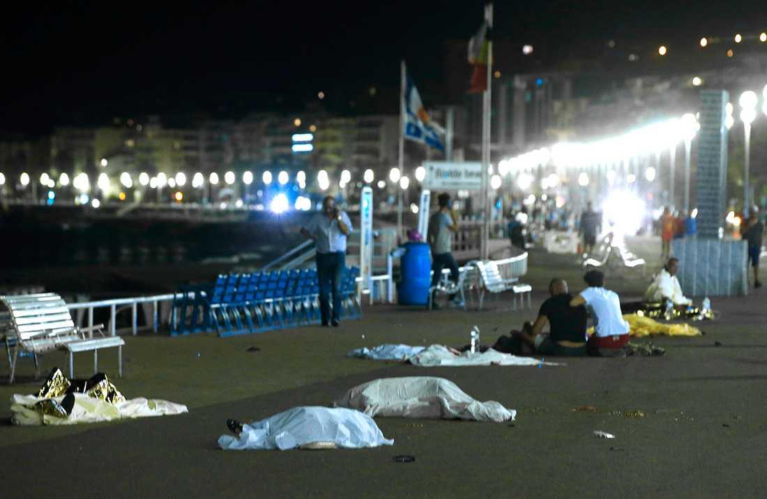 En lastbil körde in i en folksamling på strandpromenaden Promenade des Anglais i Nice under nationaldagsfirande i Frankrike på torsdagskvällen.