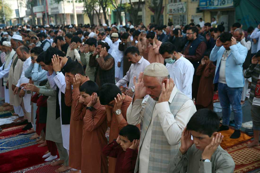 Afghanska muslimer ber under id al-adha i Kabul.